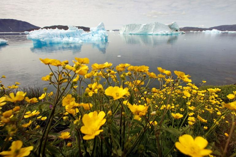Grenland i Antarktik su pokazali nedavno rekordno niske brojke mase leda i glečeri se tope 31 posto brže nego prije 15 godina (Reuters)
