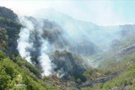 Velike štete od požara zbog političkih blokada u Bosni i Hercegovini